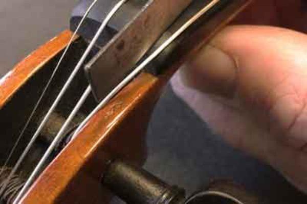 Violin Set Ups