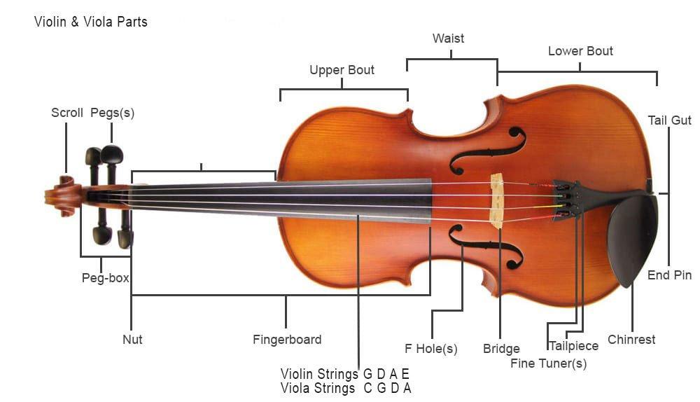 Violin & Viola Parts