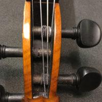 violin-pegbox