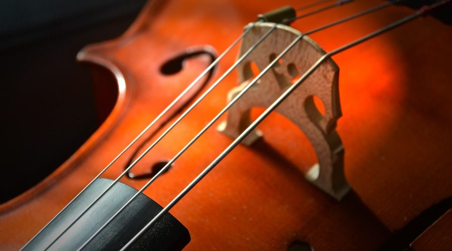 Frequently Asked Questions Relating to the Cello – Top 20