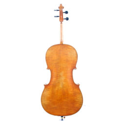 What Does A Cello Look Like - Cello Back