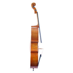 What Does A Cello Look Like Side