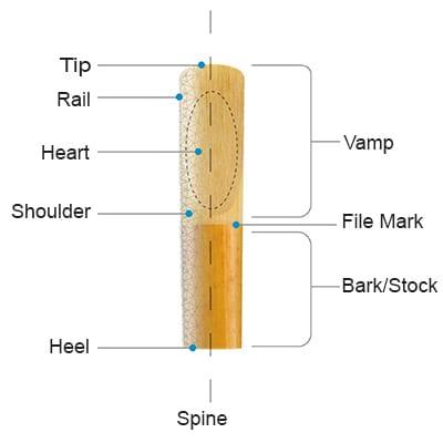 Clarinet Reed Parts