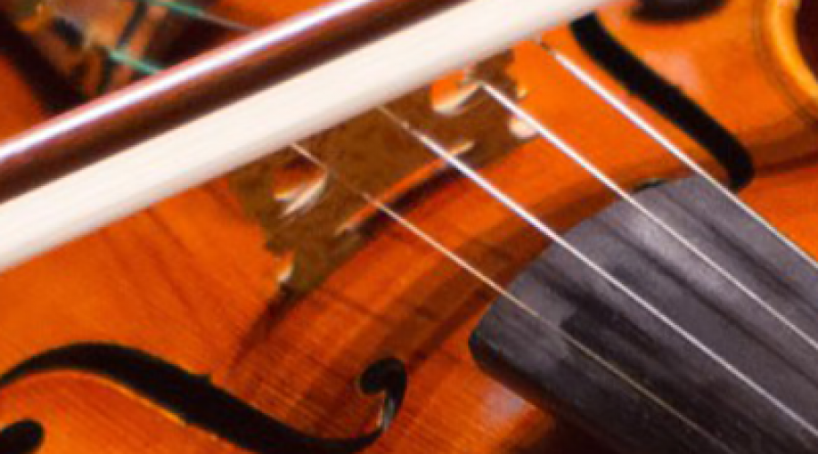 Viola & Violin – What Is The Difference?