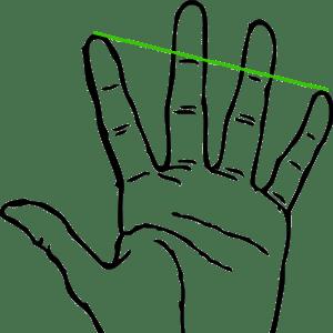 Measure Cello Size Finger Span