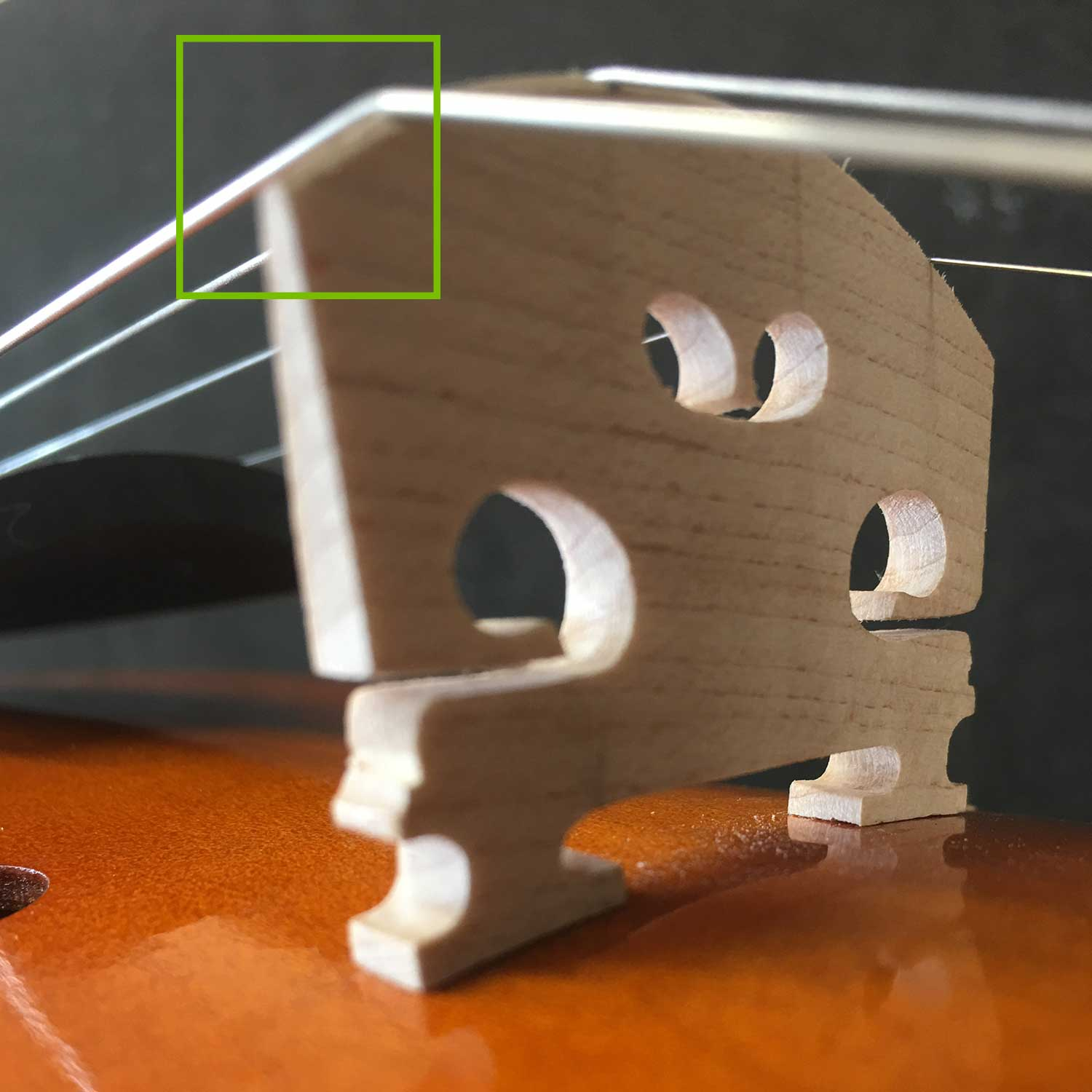 Cheap Violin - Bridge Shape & Height