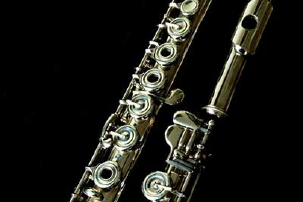 What makes a flute expensive?